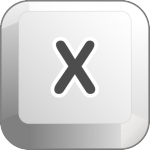 iconKey_X