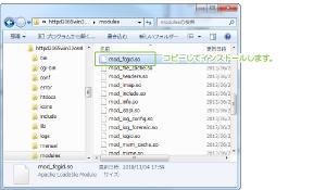 06_modulesへコピー