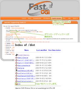01_fastcgi.comのサイト