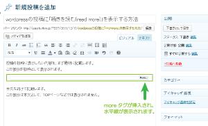 03_moreタグのビジュアルエディタ表示