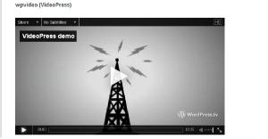 06_wpvideo (VideoPress)