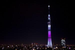 02_夜のスカイツリー