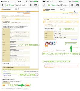 11_申請情報確認・DNS選択とカード情報の入力