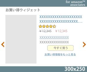 04_お買い得ウィジェット300x250