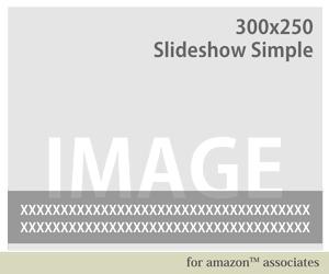 24_スライドシンプルウィジェット300x250