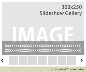25_スライドギャラリーウィジェット300x250