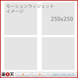 09_モーションイメージ_250x250