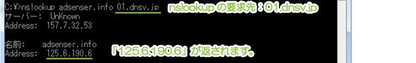 02_レジストラDNSサーバ指定でnslookup