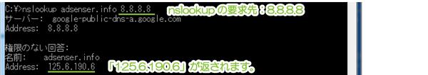 03_パブリックDNSサーバ指定でnslookup