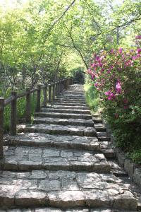 03_しばらく続く階段道