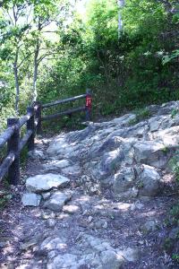 05_岩肌の露出したカーブ