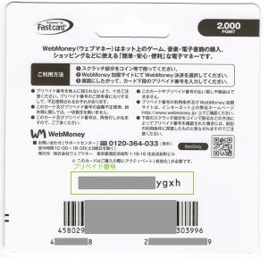 06_使い切りカードタイプ(プリペイド番号)