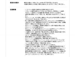 08_キャンペーン応募フォーム2