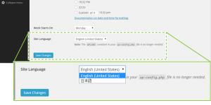 18_Site Languageの選択肢表示
