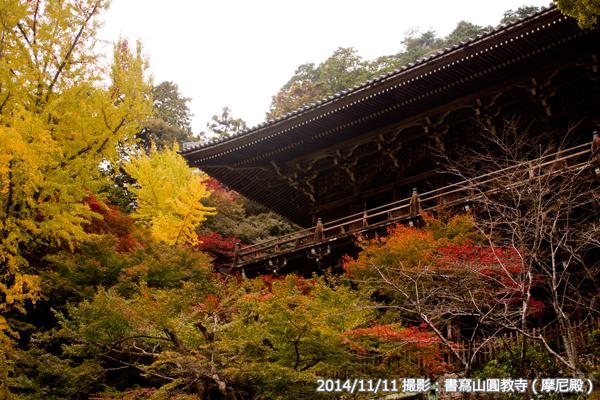 05_書写山円教寺(摩尼殿)と紅葉(D)